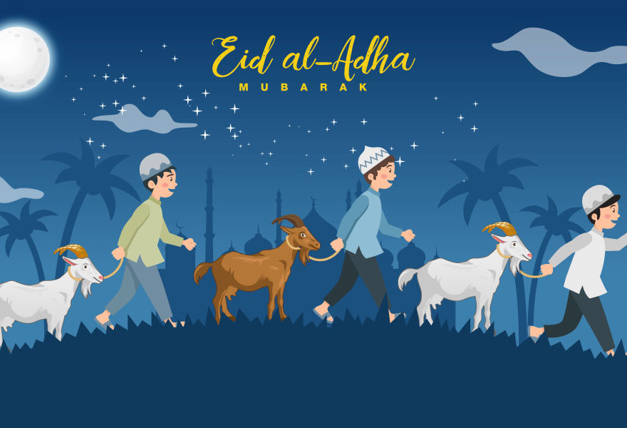 bakra eid images hd eid special dp eid 2019 eid mubarak dp 2019 eid ul adha shayariexpess
