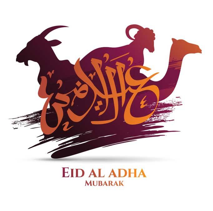 eid images hd eid ul adha special dp eid 2019 eid mubarak dp 2019 eid ul adha shayariexpess